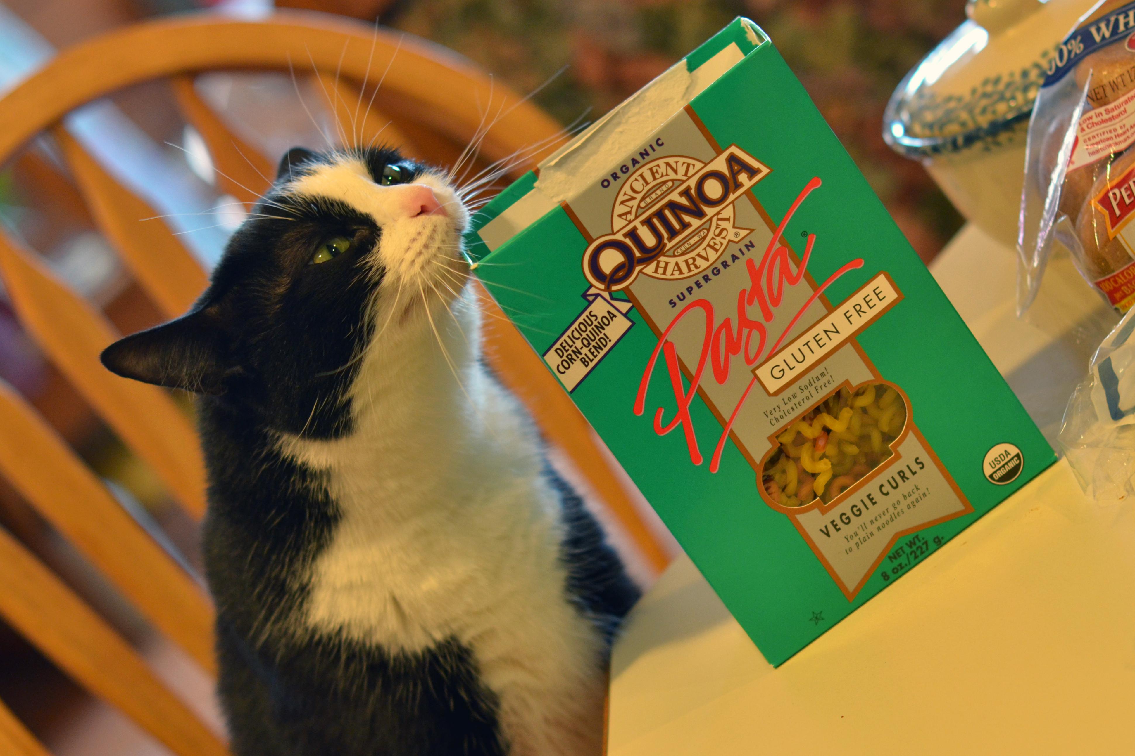 QuinoaPasta002